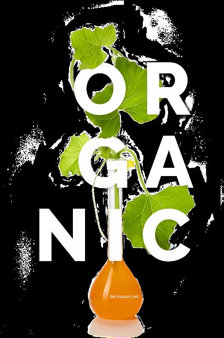 serinasun organic อาหารเสริมกันแดด 2